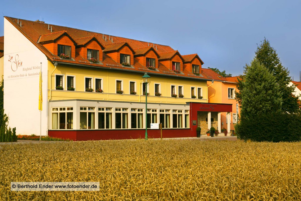 Ringhotel Zum Stein in Wörlitz