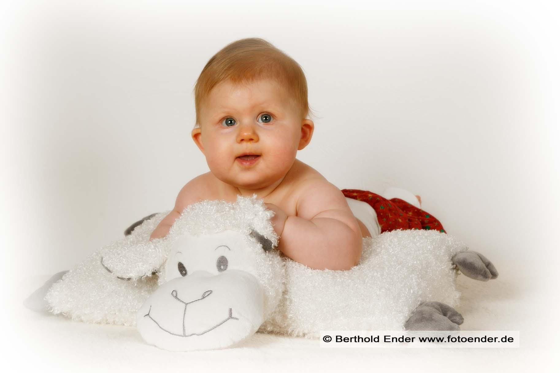 Babyfotos Fotostudio Ender