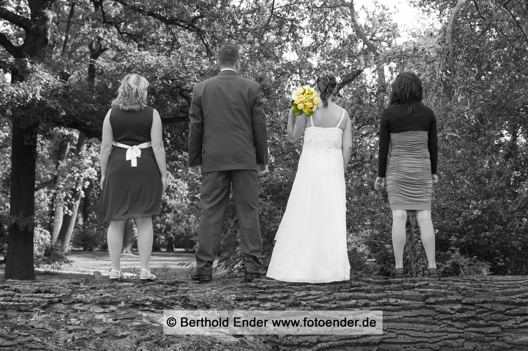 Hochzeitsbilder im Barockpark Oranienbaum: Fotostudio Ender