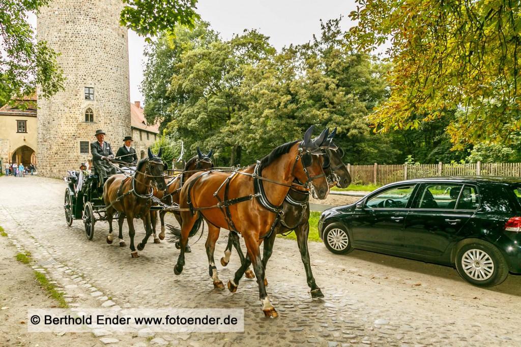 Ganztagsbegleitung einer Hochzeit- Fotostudio Ender Oranienbaum-Wörlitz