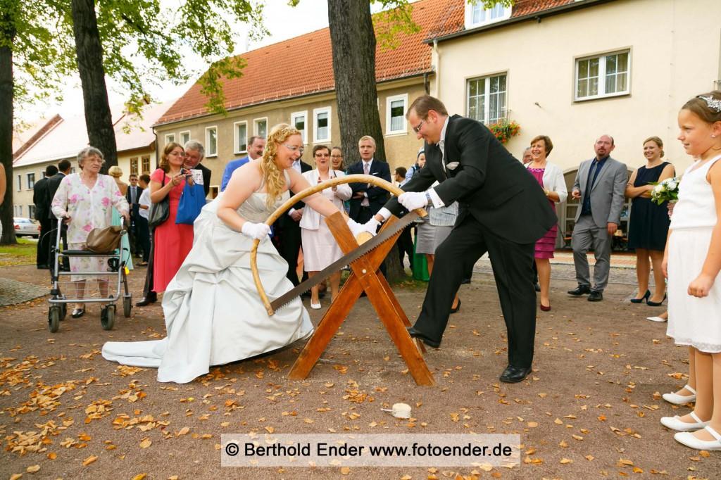 Holzsägen in Wörlitz
