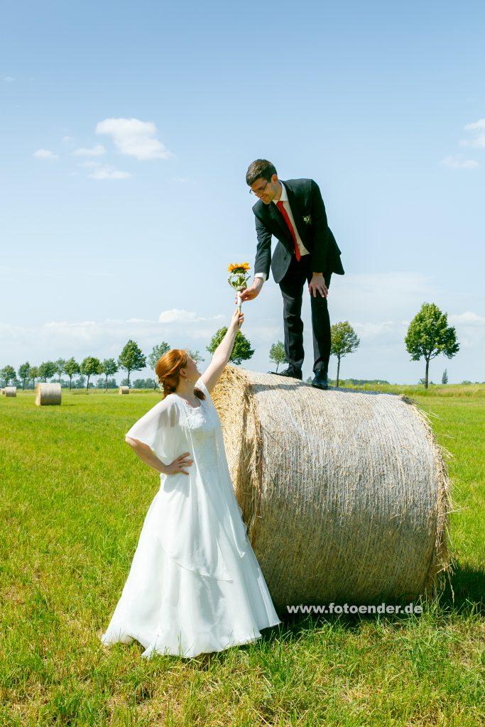 Brautpaar im Kornfeld bei Köthen